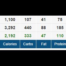 Gyzz diet image
